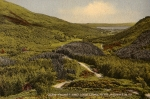 glenfinart_and_loch_long_ardentinny
