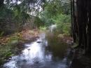 flooding_ardentinny_043-jpg