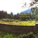 Update on Walled Garden Project
