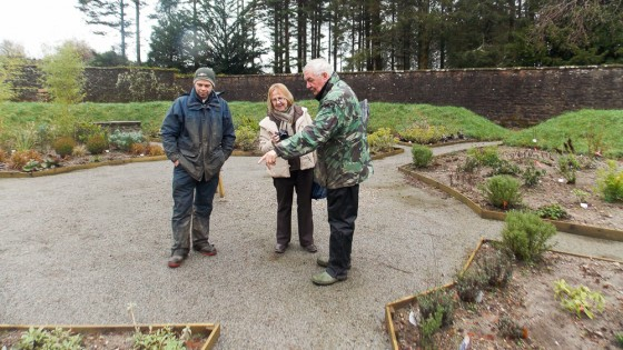 Jimmy Gordon, ACT convenor and Glyn Toplis, gardener, show Sheila the plants in the Mandela