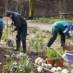 National Park volunteers dig in at Walled Garden