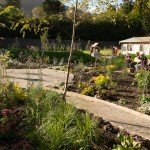 Walled Garden reopens with Eggstravaganza