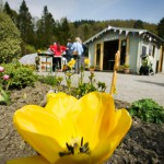 Glenfinart Walled Garden secures renewed funding