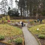 National Park Volunteers' second Action Day at Glenfinart Walled Garden